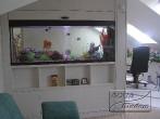 Акваріум в офісі